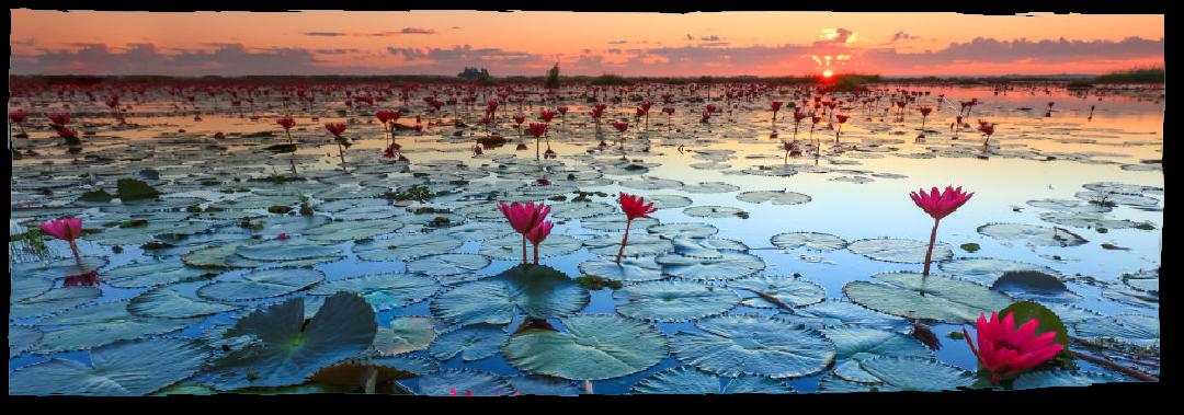 タイ国内の未知なる魅力