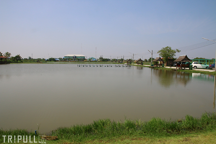Fishing in Thailand Part 1-Pilot 111