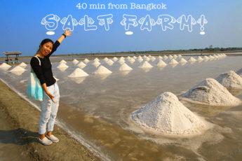 2/10(日)  乾季限定の塩田ツアー&海上に浮かぶレストラン『Bangkok Sea View Restaurant』でランチのツアー画像