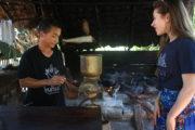 チェンマイのコーヒー園が見たい! プライベートツアーでご案内します<<日本語ガイド・専用車込み>>のサムネイル画像