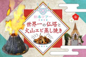 【新春ツアー】世界一高い仏塔と火山エビを満喫する日帰りツアーのサムネイル画像