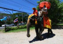 バンコク近郊で象乗りするならココ! 3つのエレファントパーク&動物園